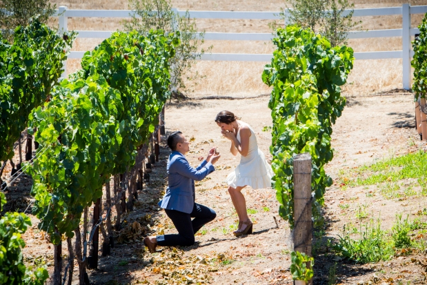 Mariage Proposal Photography at Meritage in The Napa Valley